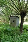 """mitja """"Wychodek"""" (2006-10-08 20:38:05) komentarzy: 3, ostatni: b. romantyczne: toaleta pod palmą, w dżungli; mieszkasz gdieś w pobliżu? A tak poza tym - zdjęcie się podoba, ma swoje natężenie zieloności :)"""