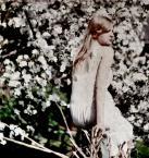 """złodziejka_długopisów """"będę z tobą tańczyć. bajki opowiadać."""" (2006-10-11 21:59:47) komentarzy: 38, ostatni: jeden z kwiatow. :)"""