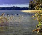 """atop """"Litewskie klimaty cd."""" (2006-10-16 20:46:01) komentarzy: 6, ostatni: śliczne"""