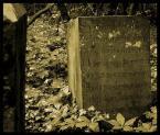"HOJA 104 ""EPITAFIUM"" (2006-10-31 21:51:44) komentarzy: 12, ostatni: znam ten nagrobek..."