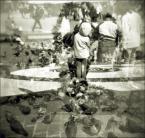 """eclecte """"gołębie, historie, wiatr"""" (2006-11-05 14:48:33) komentarzy: 3, ostatni: nagolombilo sie:P"""