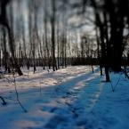 """kamron """"snow patrol"""" (2006-11-13 11:23:17) komentarzy: 24, ostatni: to jest dobre jak chole..."""