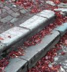 """Agniesza_k """"1..2... step"""" (2006-11-15 17:44:58) komentarzy: 25, ostatni: :-)"""