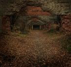 """nicy """"dark passage"""" (2006-11-24 20:23:00) komentarzy: 69, ostatni: świetny kadr..."""