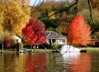 """redss23 """"tydzień na działce"""" (2006-12-05 16:48:57) komentarzy: 9, ostatni: obiecuje ze jutro rano pojde i zetne to drzewo. Dzieki za glosy i kom."""