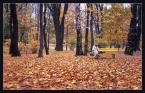 """andrzejj """"***"""" (2006-12-12 19:30:55) komentarzy: 7, ostatni: ta żółta ławka.... bardzo"""
