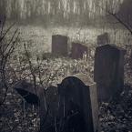 "kustulka ""zapomniane miejsca"" (2007-01-01 17:36:53) komentarzy: 21, ostatni: taak..."