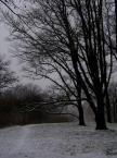 """Agniesza_k """"29.12.2006"""" (2007-01-03 19:17:04) komentarzy: 3, ostatni: sympatyczne ale rozjasnilabym troszku"""