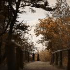 """DELF """"zapomniana plaża"""" (2007-01-04 20:57:27) komentarzy: 44, ostatni: ten mostek aż kusi aby na niego sie wdrapać...........:)"""