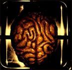"""K E I T """"m�zgi m�zg"""" (2007-02-05 04:15:32) komentarzy: 2, ostatni: To te�:D"""