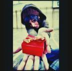 """spongy """".be.my.valentine."""" (2007-02-11 16:39:25) komentarzy: 38, ostatni: Hehhe Fotografia...."""