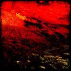"""meduzzzz """"Koziol"""" (2007-02-16 18:32:54) komentarzy: 3, ostatni: 666"""