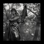 """trb """"Nekropolie - Cmentarz Rakowicki"""" (2007-02-23 14:31:37) komentarzy: 14, ostatni: bardzo w moim stylu - już Cie lubie:) serdecznie pozdrawiam"""