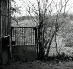 """szmaragdowe_usta """""""" (2007-03-04 13:14:24) komentarzy: 5, ostatni: (a to jest fajne to)"""