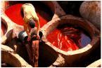 """ajsikel """"krew z krwi..."""" (2007-03-06 23:15:04) komentarzy: 12, ostatni: masakra..."""