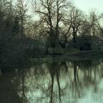 """kromka """"day in the park II"""" (2007-03-11 21:59:07) komentarzy: 2, ostatni: genialna kolorystyka i refleksy w tafli wody!"""
