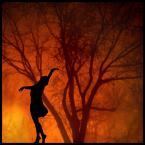 """malisz """"lekko II"""" (2007-04-14 14:23:20) komentarzy: 239, ostatni: ...piękne ... małgośka - dzięki za pokazanie :)..."""