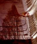 "pumikon ""Panta Rhei..."" (2007-04-18 20:30:18) komentarzy: 29, ostatni: podoba się"