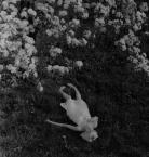 """łomograf """"śmierć przychodzi wiosną"""" (2007-04-19 00:33:58) komentarzy: 67, ostatni: Co jej tak nogi wykręciło?"""