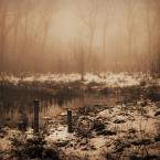 """DELF """"szepty"""" (2007-04-24 22:02:07) komentarzy: 26, ostatni: wykonanie i klimat bardzo dobry, ale mi nie odpowiada, bo kojarzy mi sie z bagnami, których okropnie sie boje i śmiercią ^^-^^"""