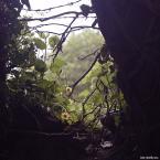 """Rafał Napierała """"beauty of nature - koniec"""" (2007-05-19 15:12:46) komentarzy: 3, ostatni: przekombinowane"""