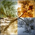 """Anavera """"Cztery pory roku"""" (2007-05-22 11:12:58) komentarzy: 16, ostatni: bdb"""