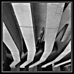 """LeOpierwszy """"Mątwa"""" (2007-06-14 10:21:14) komentarzy: 18, ostatni: kompozycja świetna, na PE porzeszkadza mi ta ramka, ale ramki to rzecz gustu, o którym sie podobno nie dyskutuje. Fajnie patrzysz na architekture ;)"""