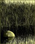 """PsychOdelia """""""" (2007-07-05 00:57:28) komentarzy: 3, ostatni: sekynd verszion z ta tonacja gra"""