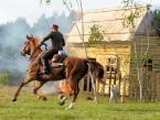 """pitek1983 """"Wojenka nr 3"""" (2007-07-11 14:03:57) komentarzy: 12, ostatni: akcja, koń i ta grzywa! jest git"""