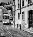 """Cigana """"Lisbona 2005"""" (2007-08-05 17:17:55) komentarzy: 7, ostatni: troszkę wąski kadr, ale zdjęcie pełne klimatu"""
