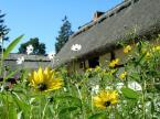 """jag """"wsi spokojna wsi wesoła"""" (2007-08-22 23:00:13) komentarzy: 6, ostatni: szkoda że kwiatki odwróciły wzrok"""