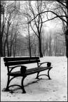 """marcin king of the pop """"winter i love"""" (2007-09-05 00:40:30) komentarzy: 3, ostatni: a mi ta pusta ławeczka bardzo odpowiada :-)"""
