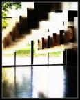 """Marcous """"łapacze swiatła"""" (2007-09-06 13:29:08) komentarzy: 3, ostatni: hehehe kurde na miniaturce wyglądalo jak zdeformowane rece szarpiąte krate ;-) ale wizja , podoba sie"""