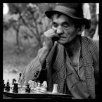 """Camelia. """"szach.y.mat"""" (2007-09-06 19:56:32) komentarzy: 17, ostatni: Bardzo....;)"""