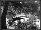 """marciszyn """"Wspomnienie"""" (2007-09-07 23:06:04) komentarzy: 1, ostatni: podoba sie"""