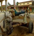 """radlis """"transporter"""" (2007-09-10 00:53:49) komentarzy: 6, ostatni: fajne:) i Gringo i kon zadowoleni ze nic nie robia :P ;)"""
