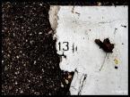 """Mayrah """"Pod Trzynastk� juz nikt nie mieszka.."""" (2007-09-21 11:19:46) komentarzy: 13, ostatni: Gufer....do przesady....Numer Najzacniejszy na �wiecie to!"""