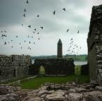 """Paddinka """"ptaszyska"""" (2007-10-05 15:16:49) komentarzy: 7, ostatni: fajnie tam"""