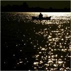 """shawrus """"Nocne łowy"""" (2007-10-05 19:43:42) komentarzy: 14, ostatni: ciekawe"""