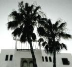 "Paddinka """" (2007-10-26 14:24:02) komentarzy: 2, ostatni: Port El Kantanui"