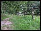 """konradmika """"Zwierzyniec"""" (2006-08-29 12:42:43) komentarzy: 12, ostatni: ładne ,ale nie w Twoim stylu ...pozdrawiam"""