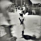 """eclecte """"uwaga, nisko latające anioły"""" (2007-11-01 20:28:12) komentarzy: 18, ostatni: o w mordę"""