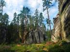 """darles """"Skalne drzewka"""" (2007-11-08 11:28:18) komentarzy: 23, ostatni: jeszcze raz górki , to bardzo fotogeniczne miejsce czemu tak mało fotek z sudetów?"""