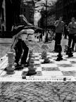 "eltioho ""...szach-mat..."" (2007-11-09 14:24:55) komentarzy: 7, ostatni: swietna reporterka"