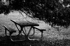 "IwannabeWILDE ""samotnosc"" (2007-11-20 03:01:16) komentarzy: 0, ostatni:"