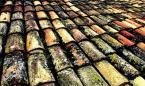 """pointofview """"łażąc z Mayrah po dachach..."""" (2007-11-22 09:35:37) komentarzy: 14, ostatni: :) kap.."""