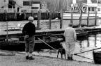 """skippy """""""" (2007-11-27 19:05:43) komentarzy: 4, ostatni: mi tam ta łódka nie przeszkadza...fajne maja skarpety ;o)"""