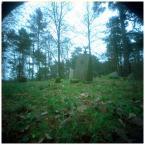 """invention """"*"""" (2007-12-10 15:14:45) komentarzy: 6, ostatni: cza znaleźć w przyrodzie :D"""