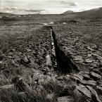 """Paddinka """"torfowisko"""" (2007-12-11 16:19:54) komentarzy: 2, ostatni: łopatologiczne bardzo..."""