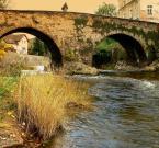 "terro ""Most"" (2007-12-17 20:41:21) komentarzy: 14, ostatni: I pomnik Nepomucena !!!!!!! na moście"